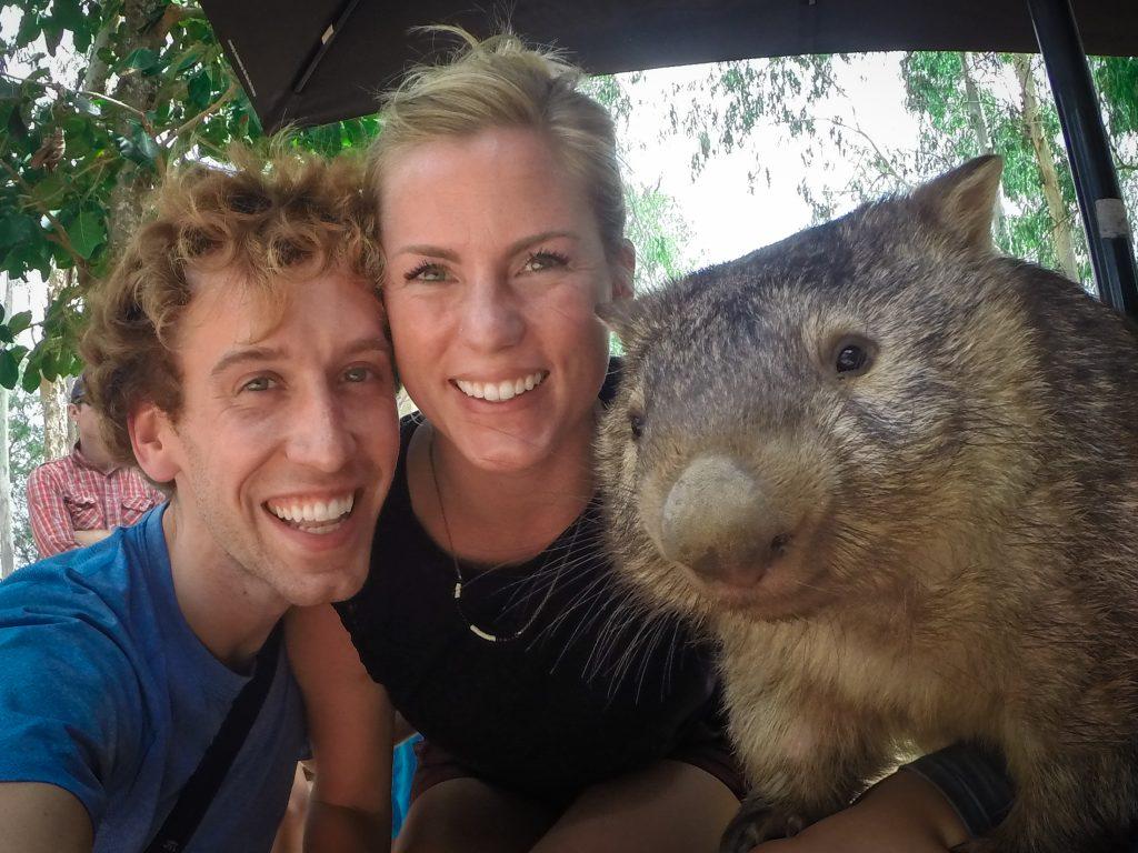wombat australia ajourneylife