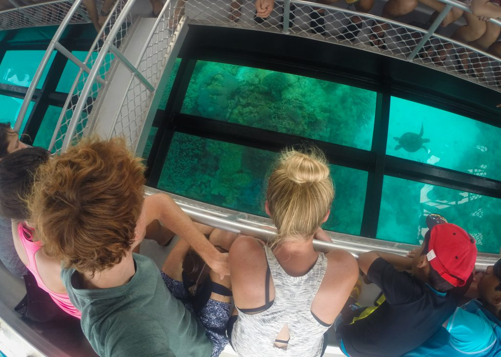 great barrier reef ajourneylife