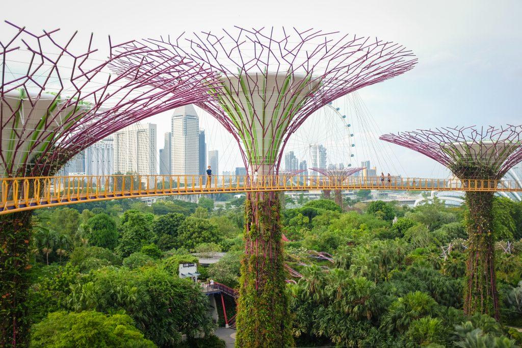 Singapore7