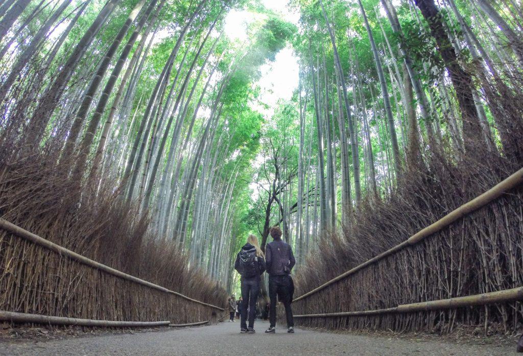 Arashiyama Bamboo Grove ajourneylife